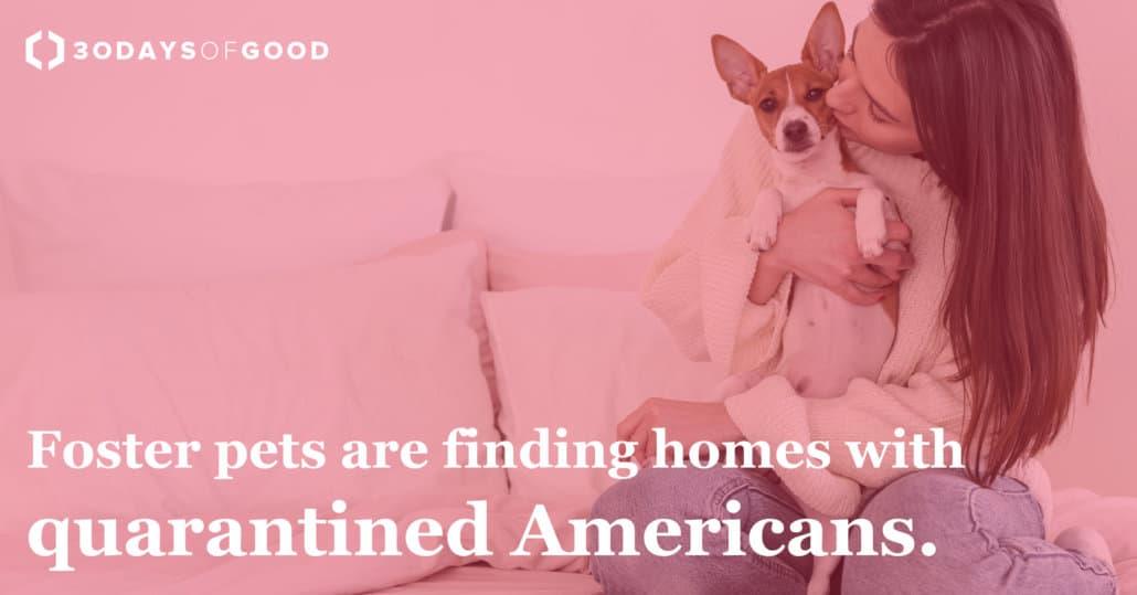 Pets-1030x539 30 Days of Good News
